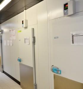 chambres froides - regulateur de temperature
